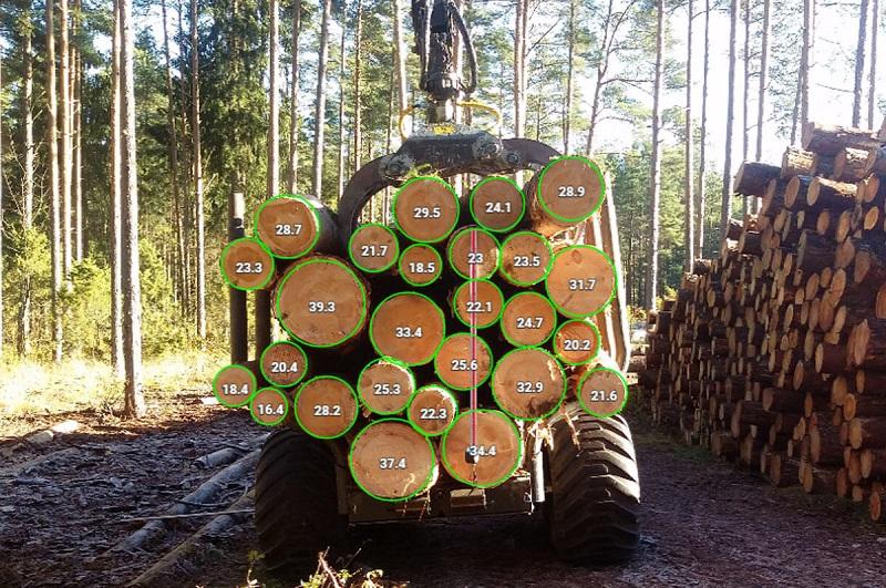 công thức tính khối lượng gỗ tròn